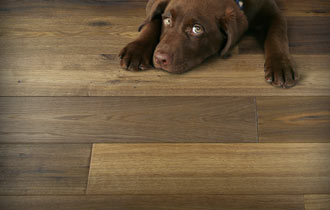 Hardwood Galleria Flooring Showroom